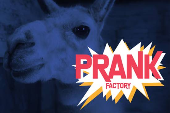 PanIQ Instant - Prank Factory